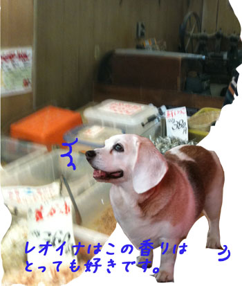 2_20100621190929.jpg