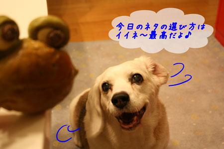 2_20100622204716.jpg