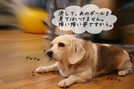 2_20100626153236.jpg
