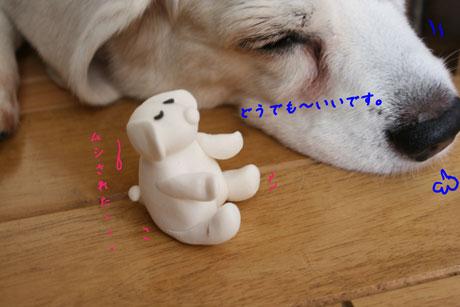 2_20100705125054.jpg