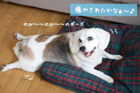 2_20100721164257.jpg
