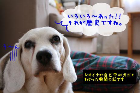 2_20100722112431.jpg