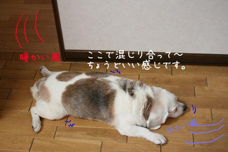 2_20100723160419.jpg