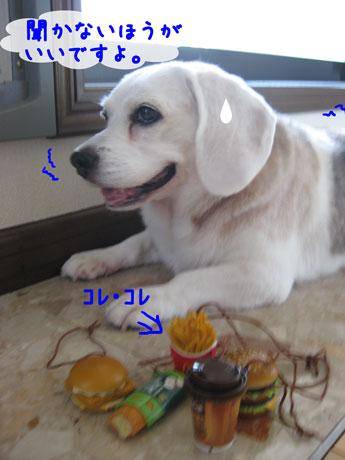 2_20100903225657.jpg