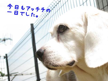 2_20100905173642.jpg