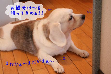 2_20100910151500.jpg