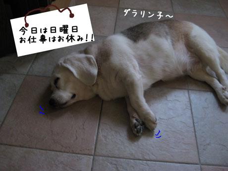 2_20100912115418.jpg
