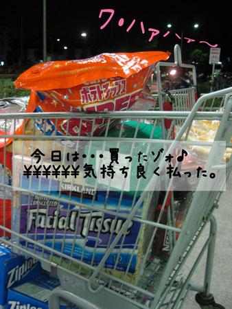 2_20100919160746.jpg