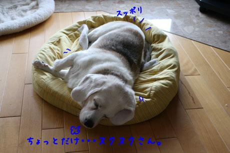 2_20100923143811.jpg