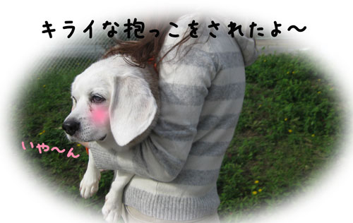 2_20101029201614.jpg
