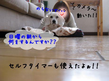 2_20101219181309.jpg