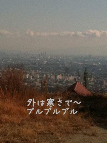 2_20110108204543.jpg