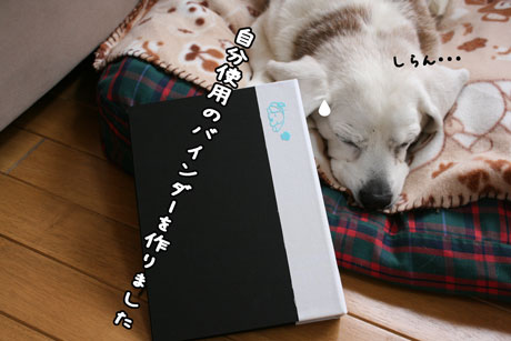 2_20110310114133.jpg