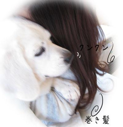 2_20110330180946.jpg