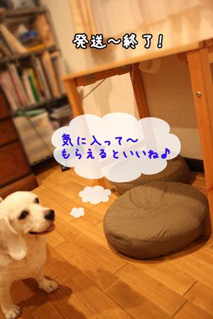 3_20091020181145.jpg