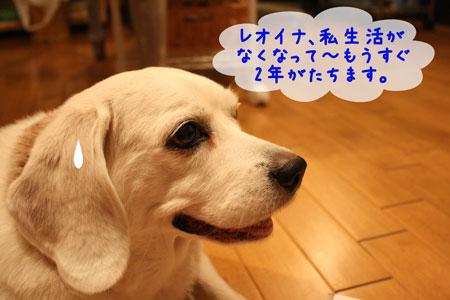 3_20091029175948.jpg