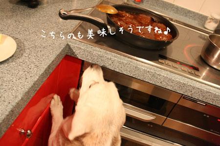 3_20091030205725.jpg