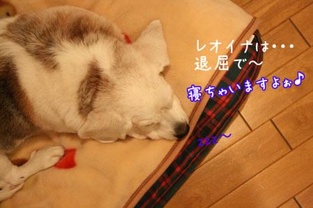 3_20091226202236.jpg