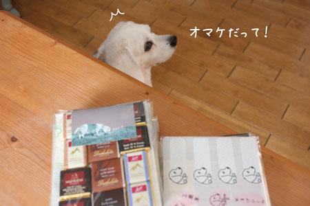 3_20100122173307.jpg