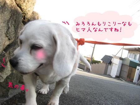3_20100130170651.jpg