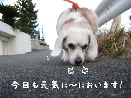 3_20100326174059.jpg
