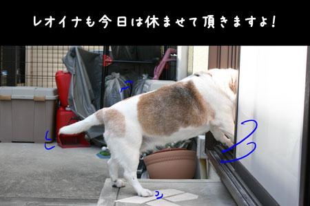 3_20100411204637.jpg