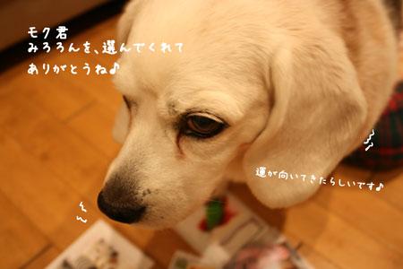 3_20100415214151.jpg