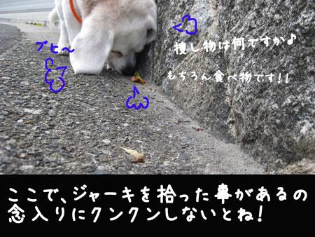3_20100417164908.jpg
