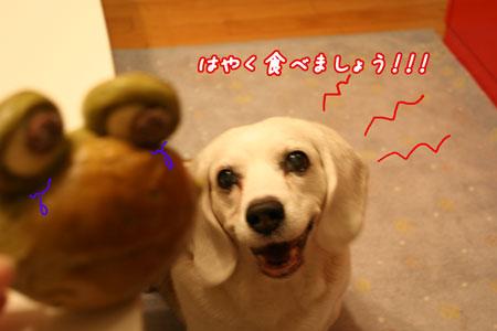 3_20100622204715.jpg