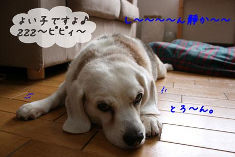3_20100707152507.jpg