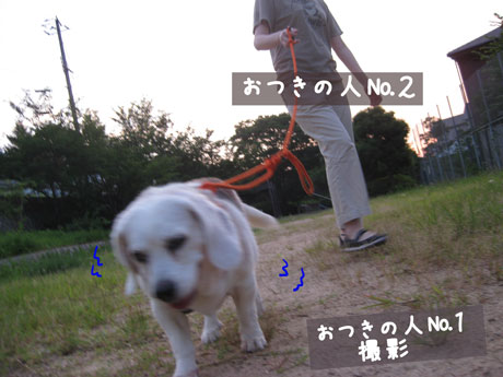 3_20100726100753.jpg