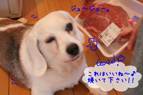 3_20100910151500.jpg