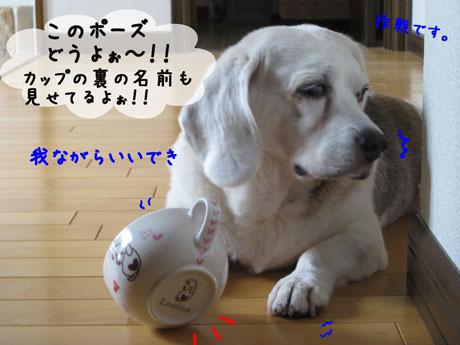 3_20100921144626.jpg
