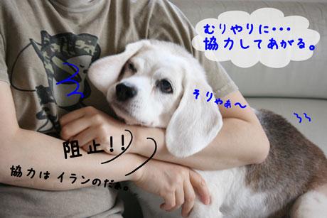 3_20100925134116.jpg