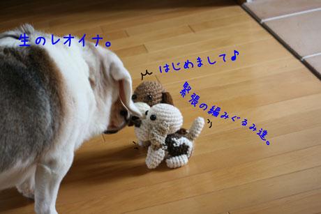 3_20100930004512.jpg