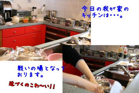 3_20101230171703.jpg