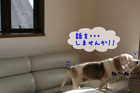 3_20110121162359.jpg