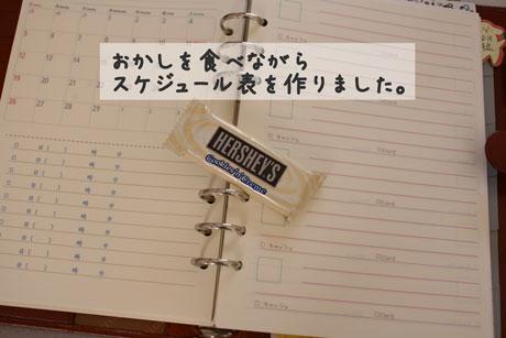 3_20110124155253.jpg