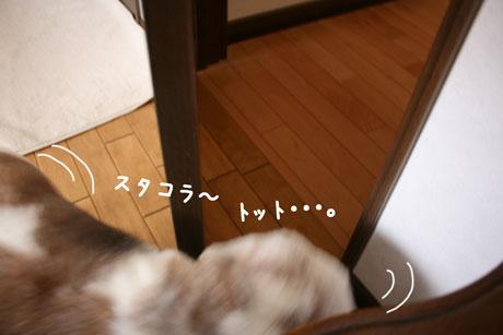 3_20110128170759.jpg
