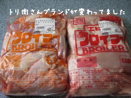3_20110205150036.jpg