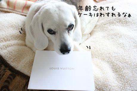 3_20110321142516.jpg