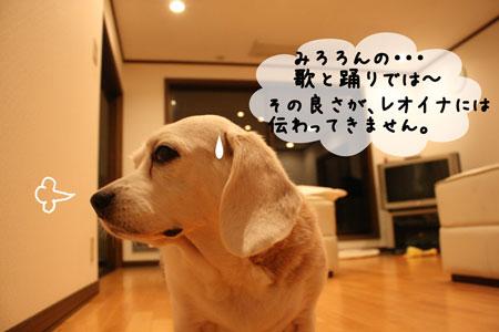 4_20091104195015.jpg