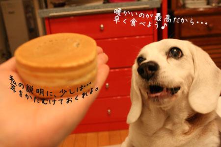 4_20100108153034.jpg