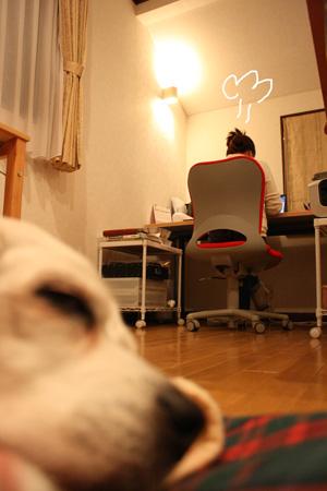 4_20100203215602.jpg