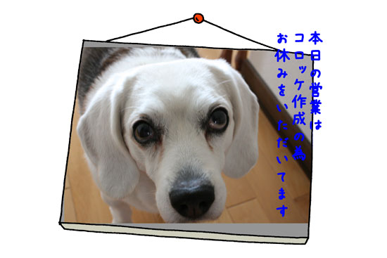 4_20100221134931.jpg