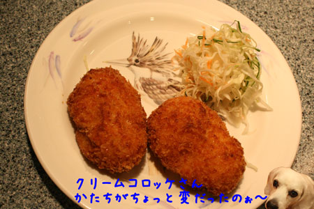 4_20100222203644.jpg