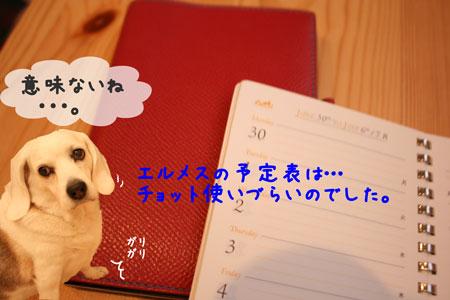 4_20100306160539.jpg