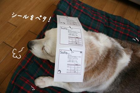 4_20100611171900.jpg