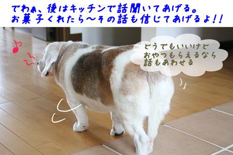 4_20100614141608.jpg