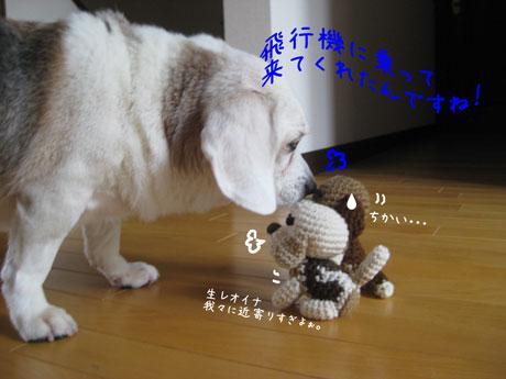 4_20100930004225.jpg